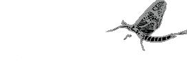 drake_logo_fly_lg